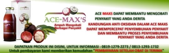 Banner-Ace-Maxs-Artikel